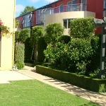 Clipped boundary hedging and shrubbery for privacy