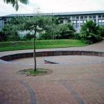 Waimauku school stage three years on